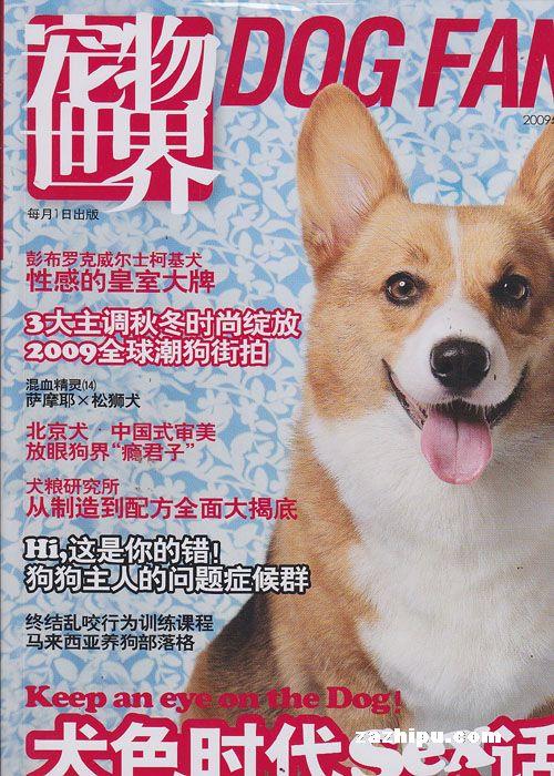 宠物世界狗谜2009年11月刊封面图片-杂志铺zazhipu.