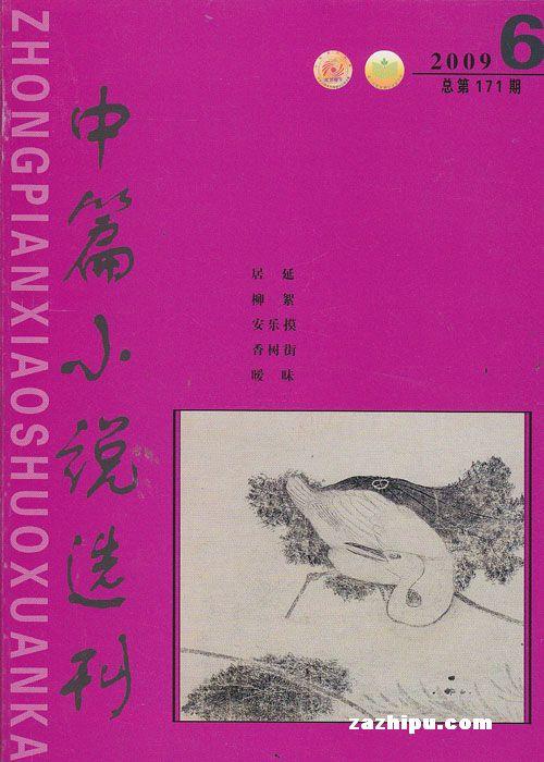 中篇小说选刊2009年第6期