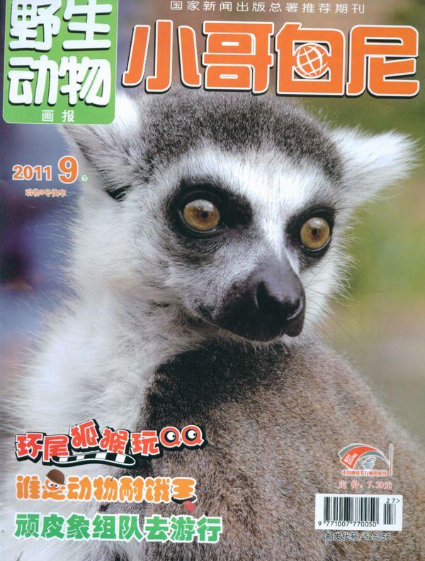 小哥白尼野生动物画报2011年9月期-小哥白尼野生动物