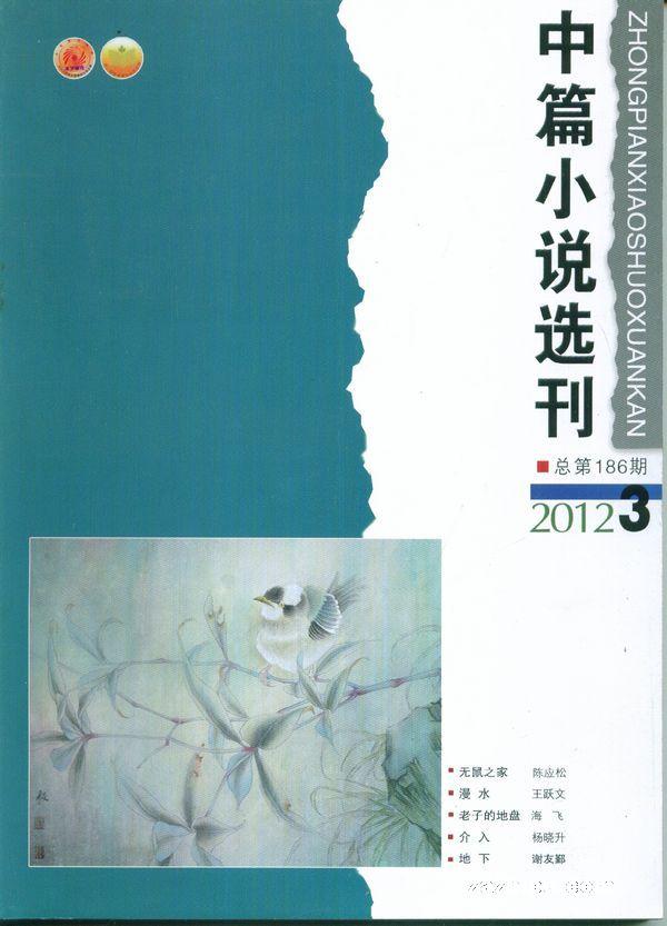 中篇小说选刊2012年3期 中篇小说选刊杂志封面