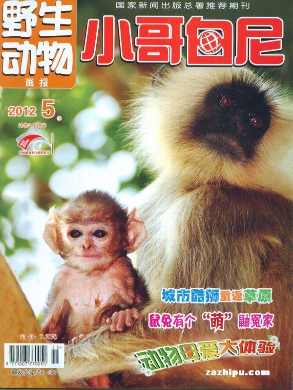 小哥白尼野生动物画报2011年5月期