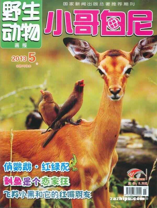小哥白尼野生动物画报2013年5月期