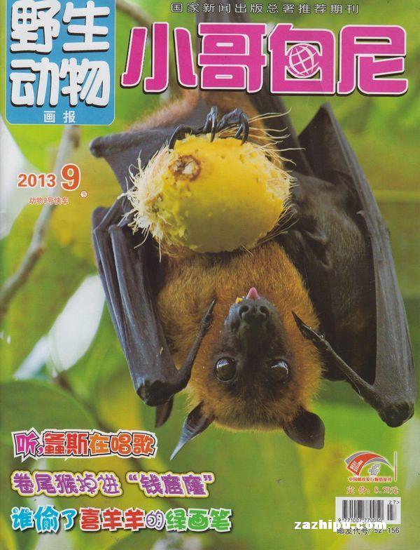 小哥白尼野生动物画报2013年8月期-小哥白尼野生动物