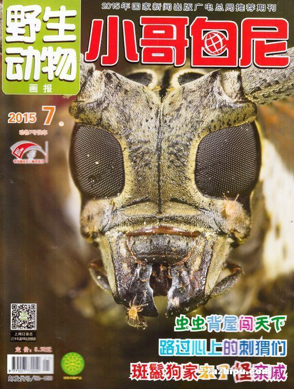 小哥白尼野生动物画报杂志,封面-杂志铺:低价,便捷的