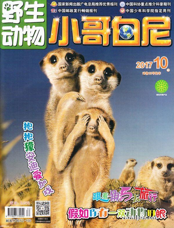 小哥白尼野生动物杂志封面 小哥白尼野生动物画报2017年10月期-小