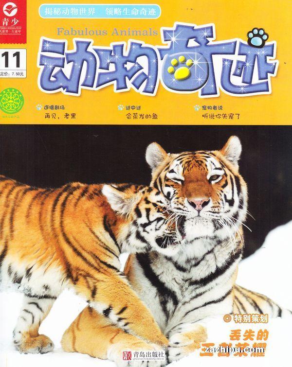 动物奇迹2017年11月期-动物奇迹杂志封面,内容精彩试读