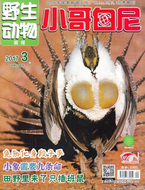 小哥白尼野生动物画报2011年1月期-小哥白尼野生动物
