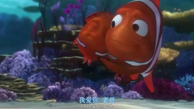 虽然这部电影中的海底世界,各种动物形象都非常符合现实自然界中的