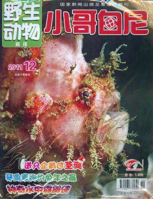 小哥白尼野生动物画报2011年12月期