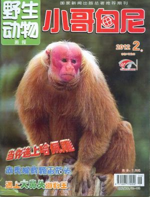 小哥白尼野生动物画报2012年2月期