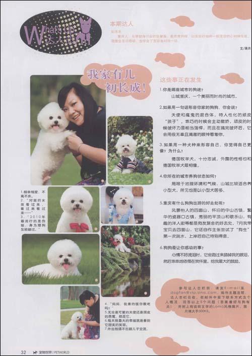 宠物杂志排版设计